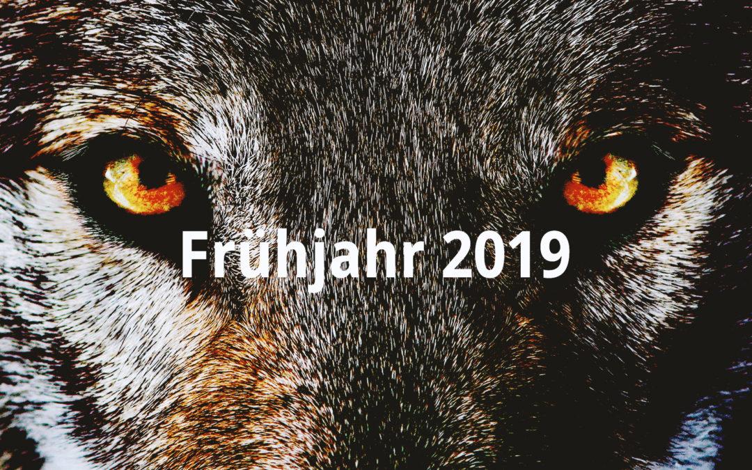 Frühjahr 2019 – WOLFSSPIEL